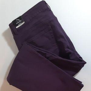 Jordache Color Purple Skinny Jeans Pants 14 - NEW